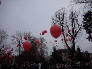 B - Stromeček v parku - listopad 2018