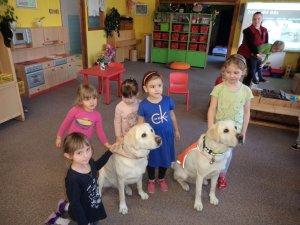 B - projektový den: Asistenční psi - Březen 2019