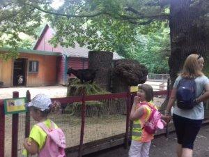 PAS - ZOO Žitava - červen 2019